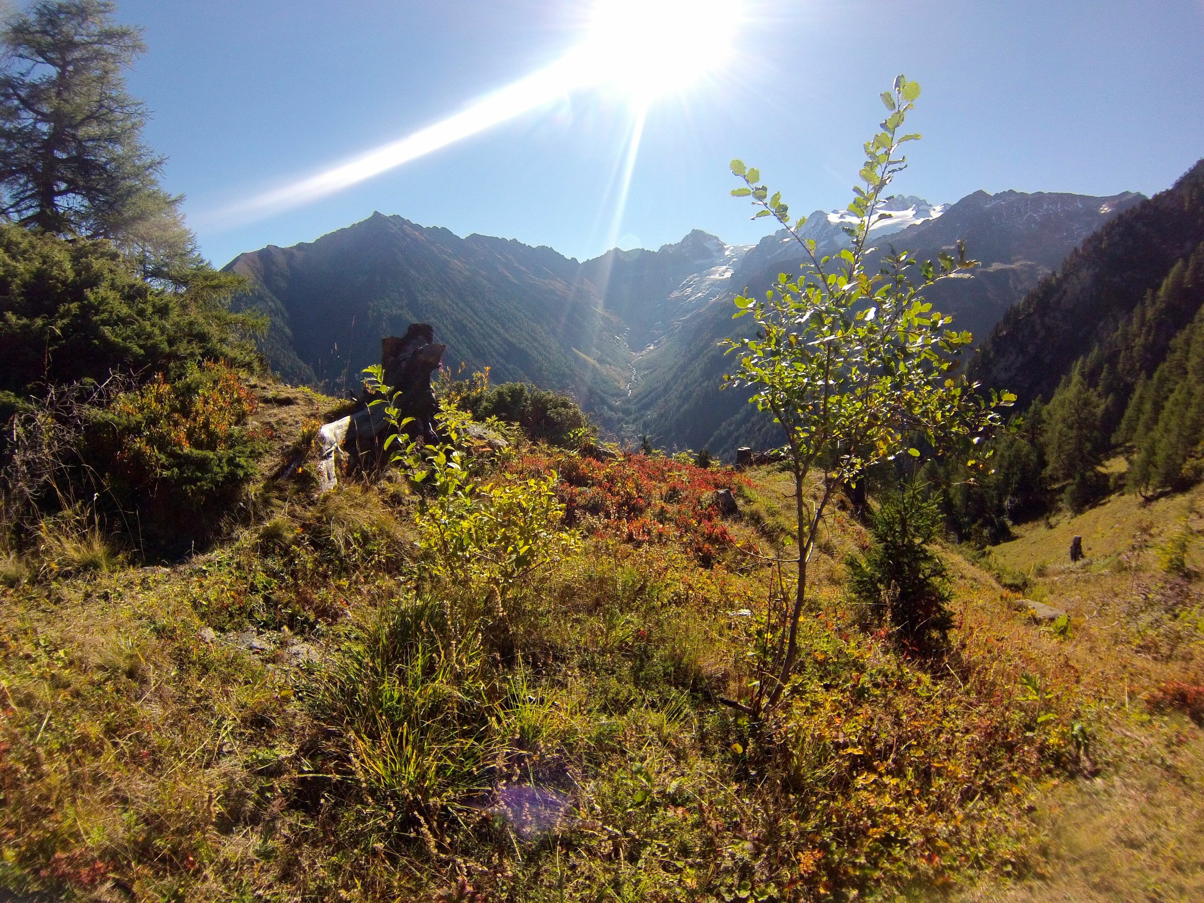 Looking over the Col de Forclaz with the Rhône valley in the distance, during a morning trail run above Trient.
